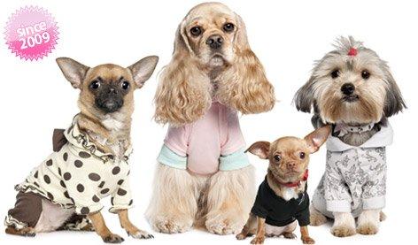 Ropa para perros de tamaño grandes